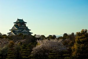 Osaka Castle - Distant by ricperry1