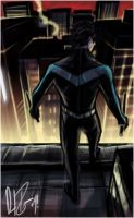Paint-Sketch: Nightwing by dio-03