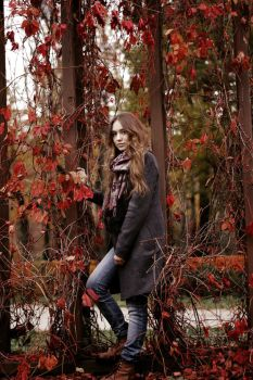 Red autumn'2 by JaneGod