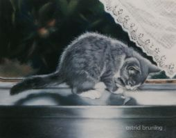 Curious Reflection - Pastel by AstridBruning
