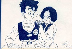 Gohan and Videl by NewJillValentine88