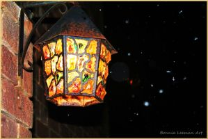 Snowy Streetlight by Bonniemarie