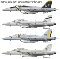 Sorted F-18F Super Hornets by Schwann90