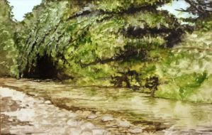 Beck with trees and shingle by Rearda