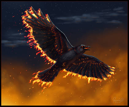 Ember Crow by SageKorppi