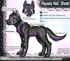 :: Payasa Ref. Sheet :: by Payasa