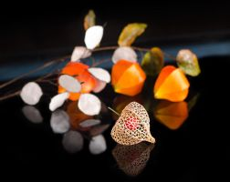 Chinese Lantern and Silver Dollars by Battledress