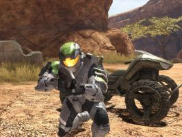 Halo 3 screen.2 by HylianForrunner