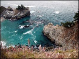 Pompous Grass, Big Sur by SZenz