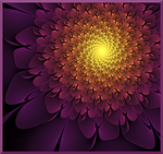 Fractal Flower by Wi6791lly