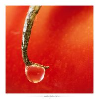water drop by subaqua