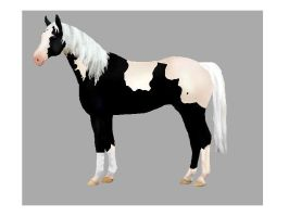 Free Horse Adoptable*SOLD* by silverwolf900