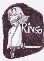 Doodle: Ringo Master by KabouterPollewopje