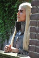 Thranduil what do your elf eyes see? by anouckvos