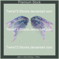 344-Twins72-Stocks by Twins72-Stocks