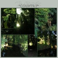 Country 5 by E-Stock