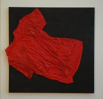 Red Shirt by Zaider