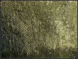 Texture7 by Gnewi-Stock
