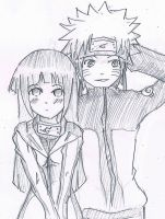 Request - bocook1515 'NaruHina' by seraxshana