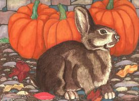 Bunny By the Wall by KathrynPinkham