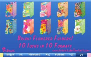 Bright Flowered Folders 1 Icon by TNBrat