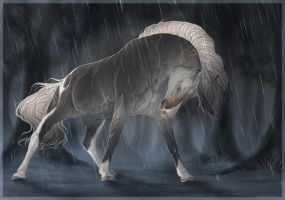 BRlS Blind wolf rain by BRls-love-is-MY-Live