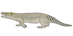Estesia mongoliensis by WSnyder