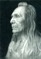 Indian Chief by ktbgreat2