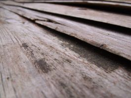 Wood panels and grain by zpyder