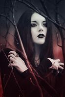 Witch by AskaTao