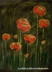 Poppies by Ludifico
