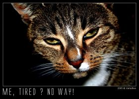 Me Tired ? No Way by VampBea