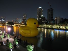 Giant Rubber Duck 03 by nicojay