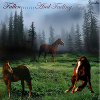 Fallen.....And Fading Fast by EumyCookie