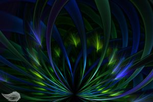 Endless Peacock by Colliemom