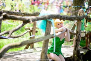 Children Love Fairies by Flying-Fox