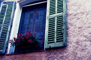 the window3. by kamilla-b