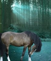 there's times by lesliemarie-manips