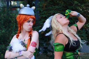 Asterix and Obelix 4 by V-kony