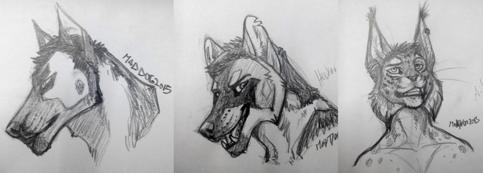 Sketches by MadDogVII