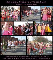 3rd Annual Speedo Run for the cause by DwayneF
