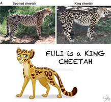 Fuli is a King Cheetah by TC-96