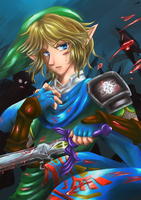 Link [Hyrule Warriors] by SoulOfUndead