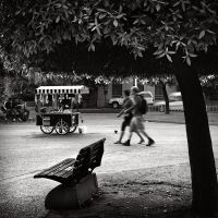 Under the Tree by kpavlis