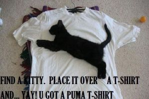 Kitty or PUMA T-Shirt? by DUDE8810