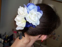 Danyale's Hair Clip by Ceraine