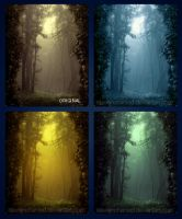 Forest actions by EliseEnchanted