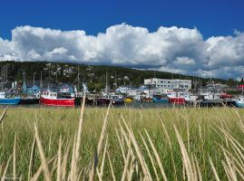 A Lovely Day in Alma NB by Brian-B-Photography