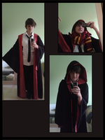 gryffindor robe by pampelmusel