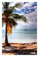 Like a Dream HDR by wolmers